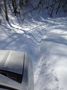 昨シーズンの林道