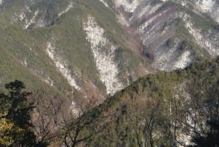 F山から見たN谷